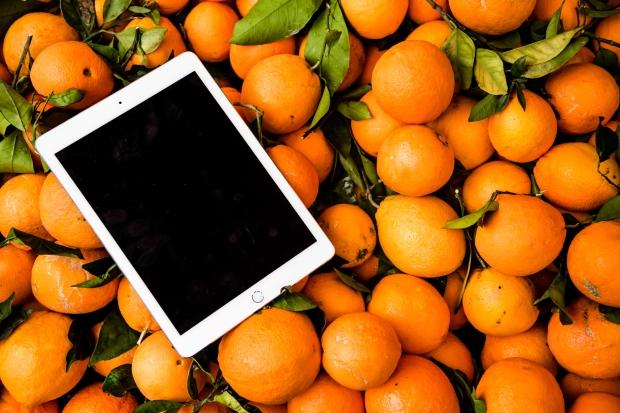 citrus-delicious-food-927802.jpg